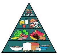 פירמידת המזון האמריקאית - 1992