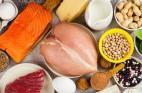 המלצות לצריכת חלבון לאחר האימון הגופני