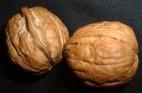 שמנים: אגוזי מלך, זרעי צנובר וגדילן