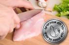 עוף ללא אנטיביוטיקה: מדוע צריכתו עדיפה?