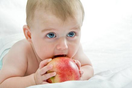 """""""תינוקות נדרשים לכמות שומן גבוהה כאחוז מסך הקלוריות בתפריטם"""""""