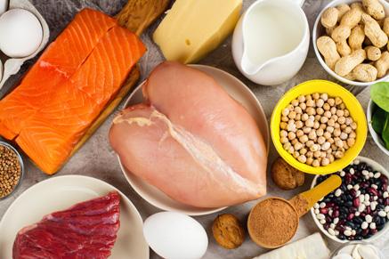 מבחר מאכלים עתירי חלבון