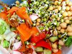 סלט ירקות עם שעועית מש מונבטת וחומוס
