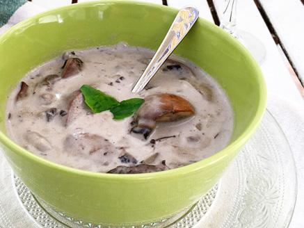 מרק פטריות חלבי