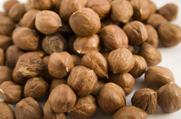 אגוזים: סוגים וחשיבות תזונתית