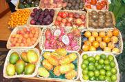 פירות העל לריפוי מושלם