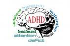 ADHD: כל מה שצריך לדעת