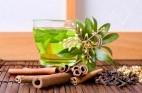 חורף קר: תזונה וצמחי מרפא