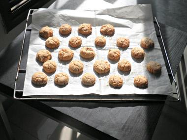 עוגיות חלבה אפויות בתנור