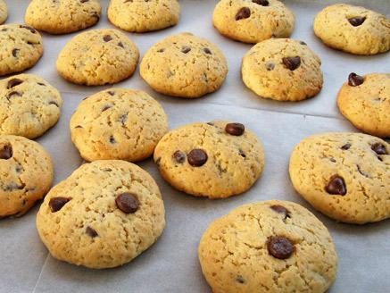 עוגיות שוקולד צ`יפס פשוטות