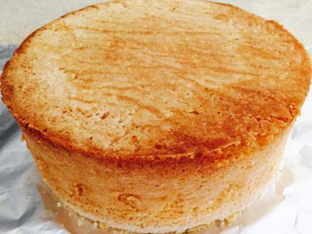בסיס טורט לעוגה