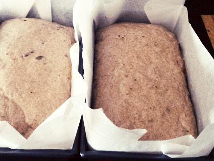לחם שיפון מקצועי להכנה ביתית