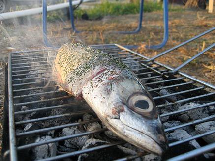 דגים על האש