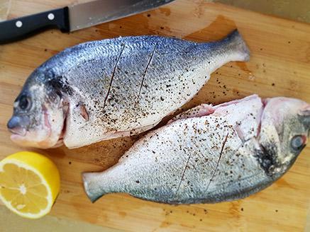 דג דניס שלם מטוגן במחבת