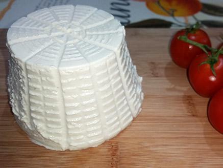 גבינת קשיו ביתית