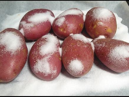 תפוח אדמה אפוי במילוי גבינות